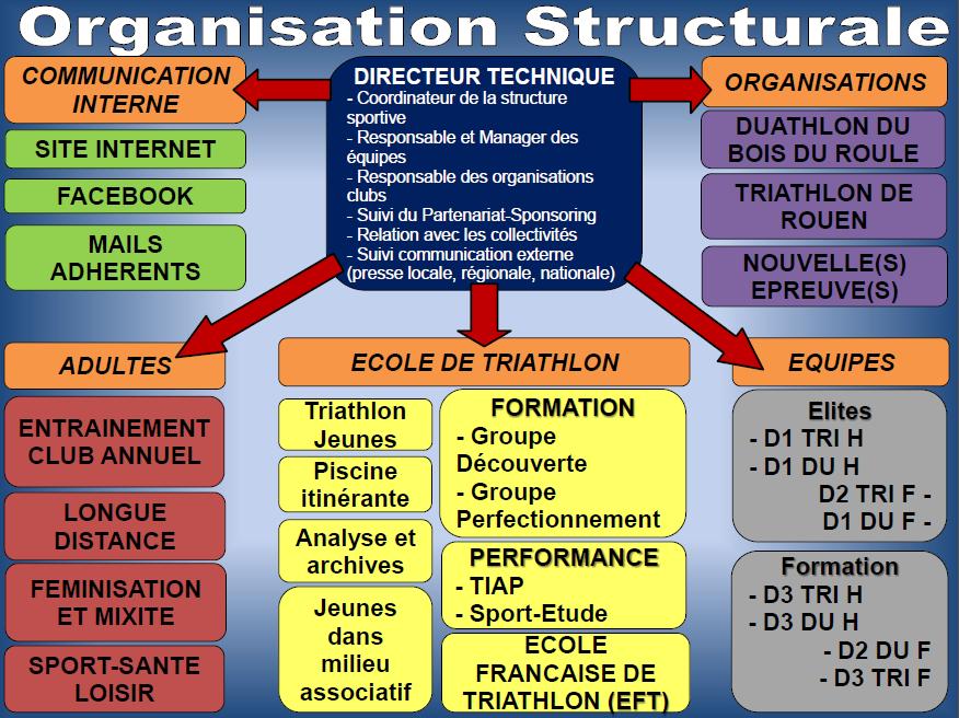 organisation structurale
